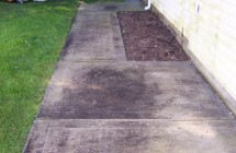 Cement Walkway & House Siding Cleaning